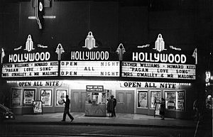 Hollywood Cinema
